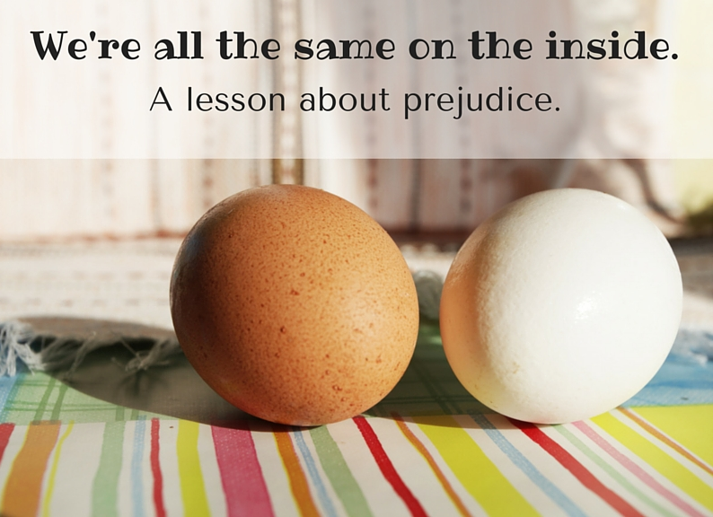 We're all the same on the inside, a lesson about prejudice.